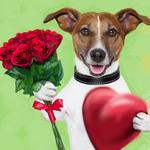 """Алмазная мозаика """"Пес с розой"""""""