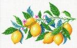 """Канва с рисунком """"Лимонная гармония"""""""