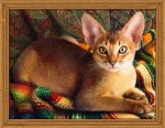 "Алмазная мозаика ""Абиссинский кот"""