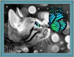 "Алмазная мозаика ""Бенгал и бабочка"""