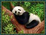 "Алмазная мозаика ""Сонная панда"""