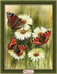 "Алмазная мозаика ""Бабочки"""